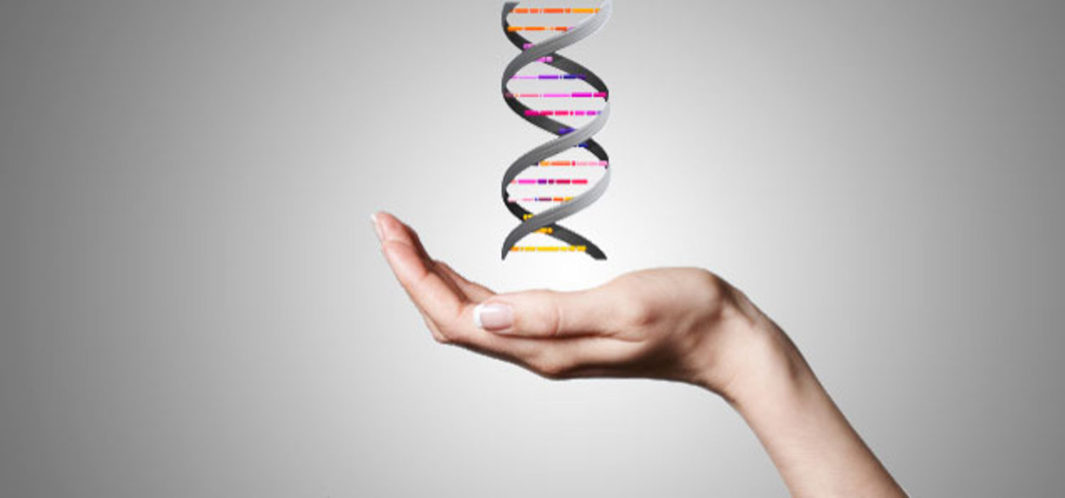 Epigenetics For Beginners
