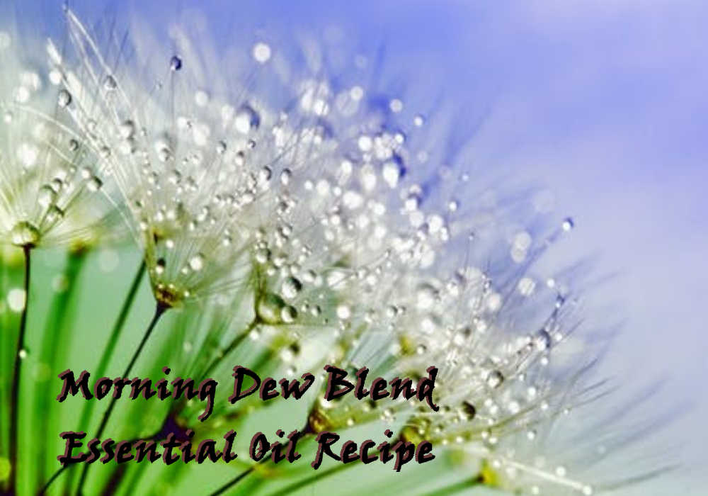 Morning Dew Blend Essential Oil Recipe